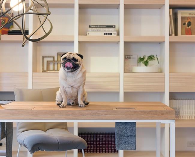 malak-apartament-s-kreativni-idei-za-izpolzvane-na-prostranstvoto-9g