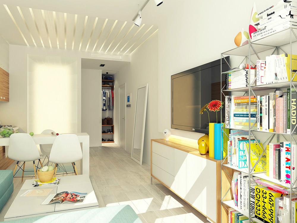 mini-apartament-sas-svetal-i-funktsionalen-dizain-3g