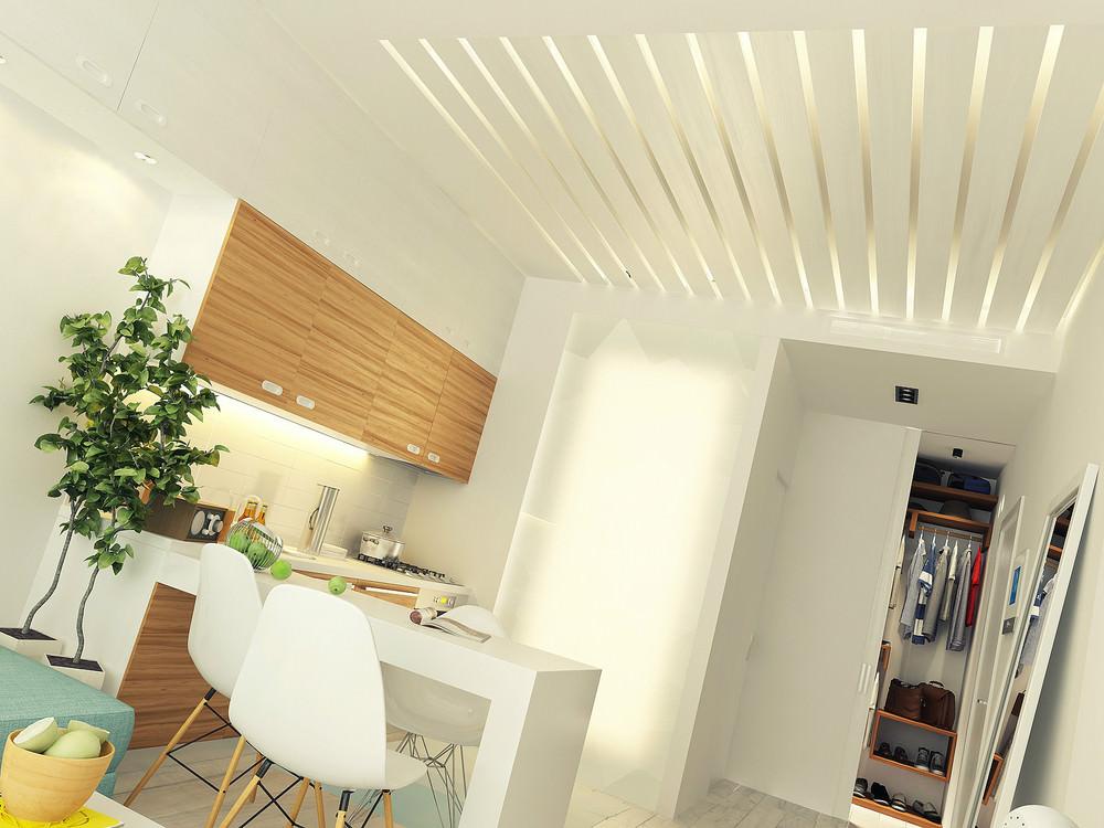 mini-apartament-sas-svetal-i-funktsionalen-dizain-7g