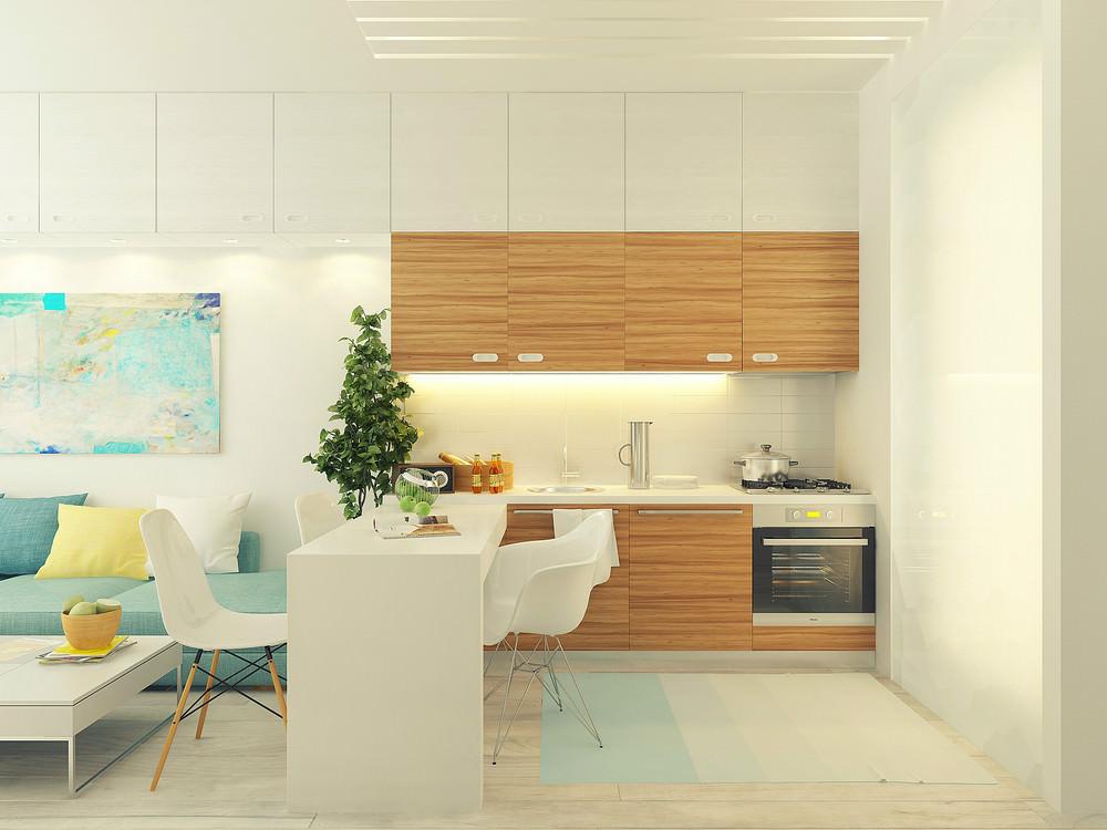 mini-apartament-sas-svetal-i-funktsionalen-dizain-9g