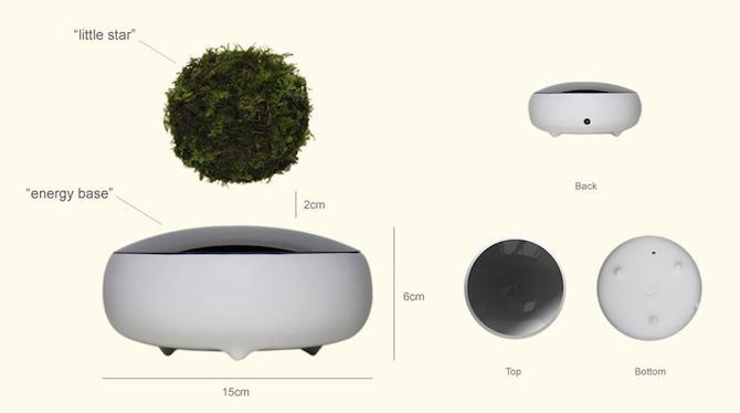 magichesko-dravche-bonsai-koeto-vitae-vav-vazduha-5g