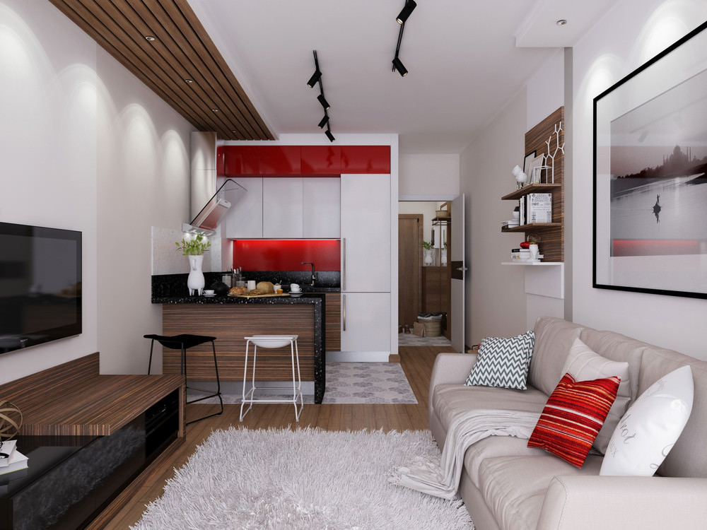 proekt-za-ednostaen-apartament-s-priobshtena-terasa-30-m2-1g