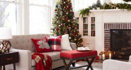 Доза Коледно и новогодишно настроение у дома [2016]