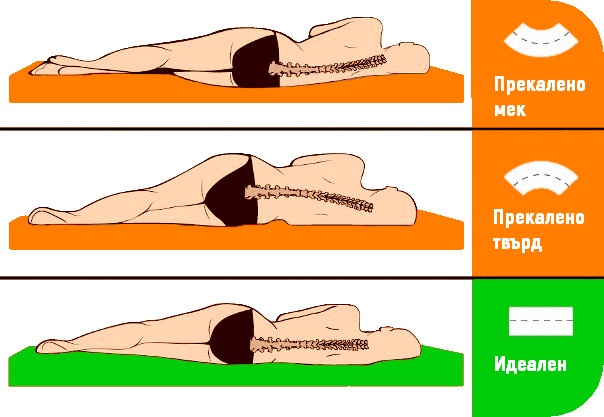 матраци ортопедични Избор на ортопедичен матрак – Функции, видове пълнеж, размери матраци ортопедични